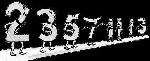 Простые числа (2, 3, 5, 7, 11, 13...)